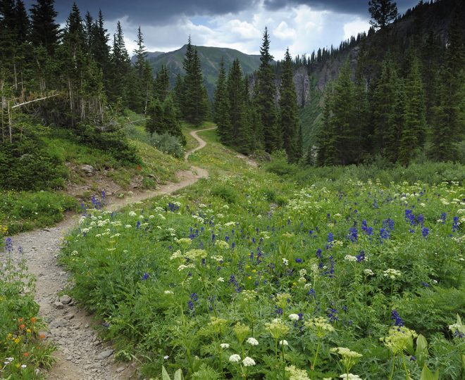 Hiking trail in Rocky Mountains, Colorado